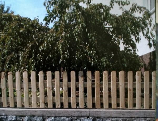 Ammersee-Zaun Doppeltor mit Beschlag